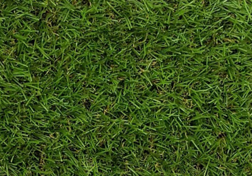 Artificial Grass Carpet - Spring
